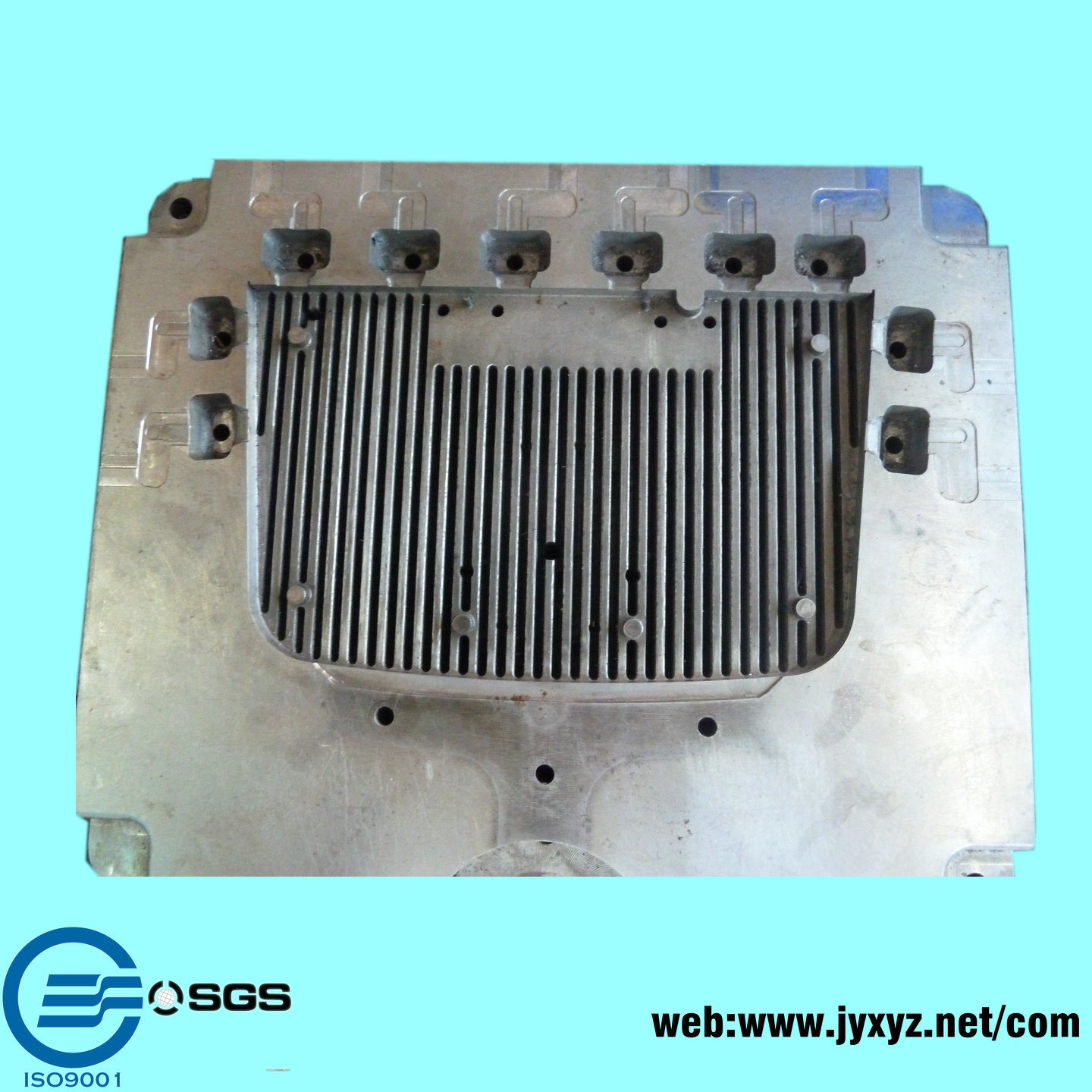 Shenzhen Aluminum Radiator Mould Maker - Mould Products