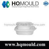 Plastic Injection Preservation Box Mould