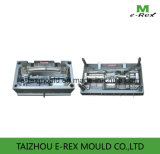 Plastic Auto Part Mold (E2)