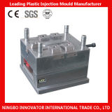 Precision Injection Mould Manufacturer From China (MLIE-PIM122)