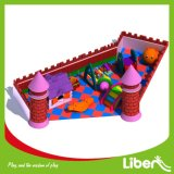 Indoor Amusement Playground for Nursery Students