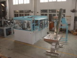 Bottle Blow Molding Machine (DR)