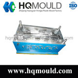 Plastic Injection Mould/Auto Part Mould